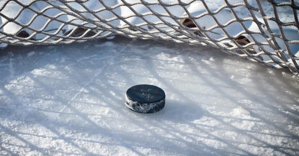 Хоккейная шайба в воротах.