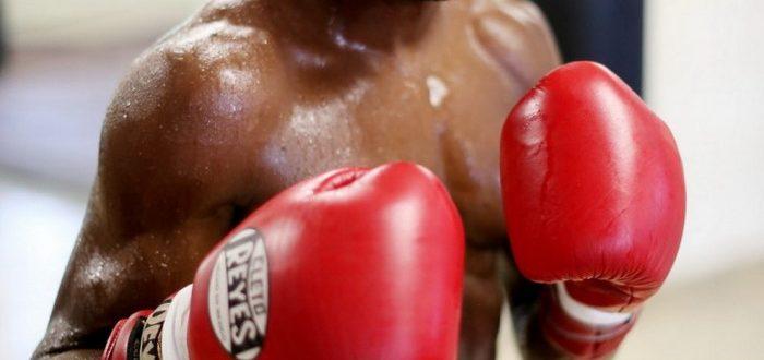 Боксер в стойке.