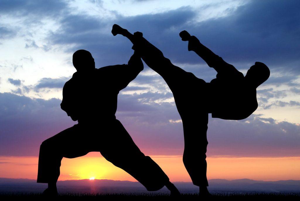 Запрещенные боевые искусства. Топ 10 невероятных боевых искусств, о которых мало кто знает