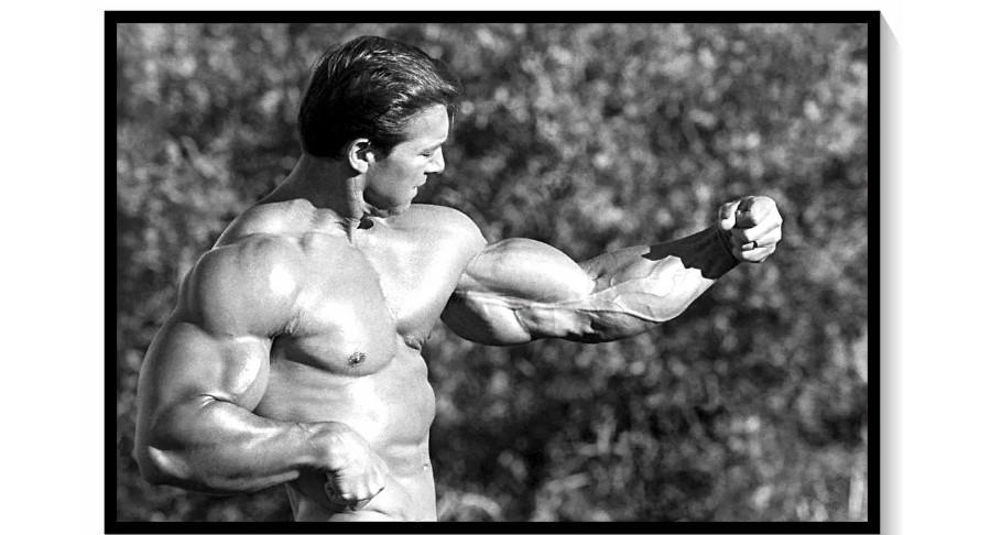 Метод Ларри Скотта! 3 упражнения, чтобы накачать бицепс до 54 см